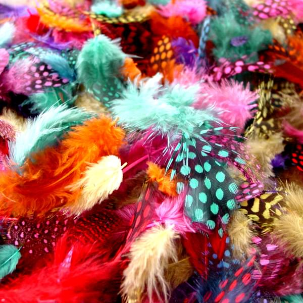 BI2591 Colour Speckled Feathers