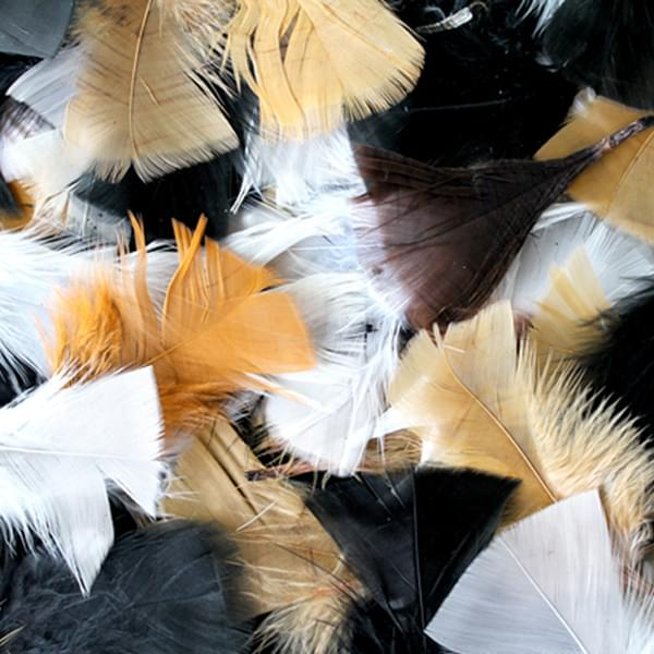 BI2594 Natural Feathers 50g Assorted