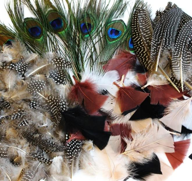 BI2595 Natural Feathers mixed pack