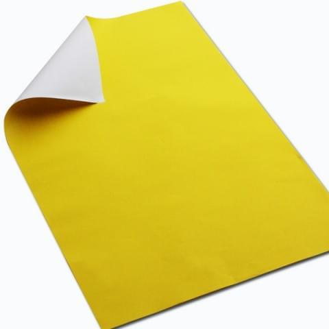 BI7934 yellow
